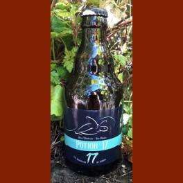 Bière aux champignons 33 cl