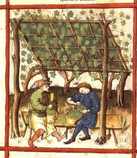 Verjus of the middle ages